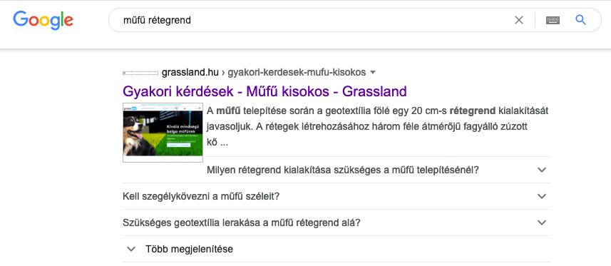 mufu-faq-scheme-google-találat